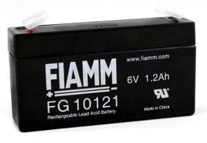 fg10121