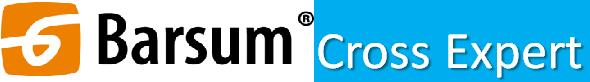 Barsum_логотип