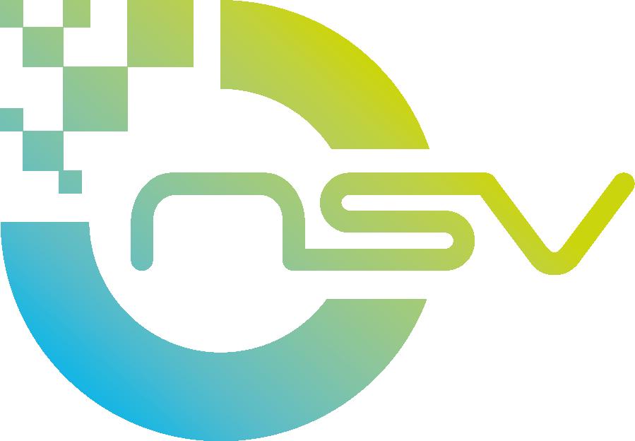 kx-nsv300